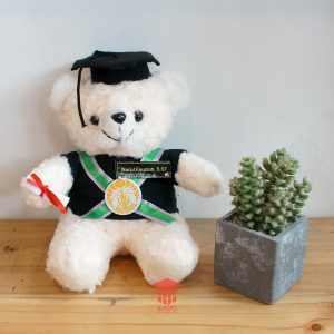 jual Boneka Bear Custom 085878749975