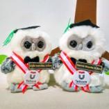Boneka Wisuda Owl mini Jogja