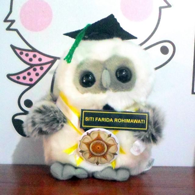 OWL Boneka Wisuda UGM