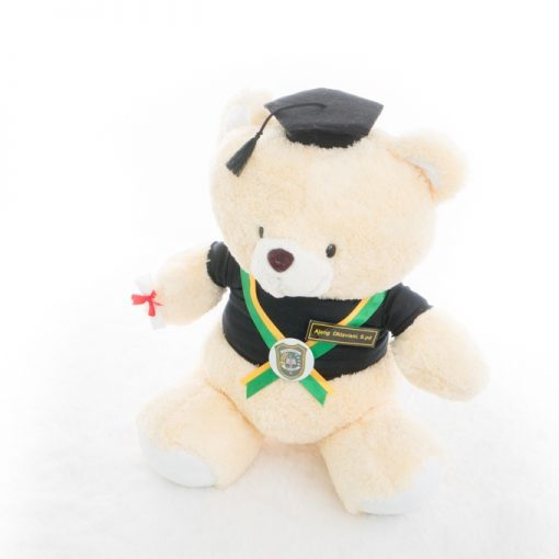 Jual Boneka Wisuda Teddy Bear Large Size Bear Large Cream