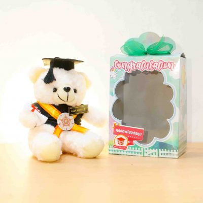 teddy bear m01 cream BOX Glossy